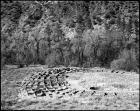 Tyuonyi Ruins