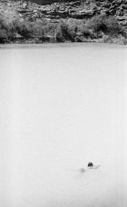 Swimmer in Little Colorado River