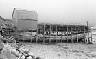 Boat Wharf / 1981